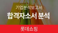 기업분석보고서 6. 롯데그룹, 합격자소서는 왜 합격했을까?