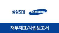기업분석보고서 3. 삼성SDI, 올해 사업전략은 무엇인가?