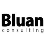 블루안컨설팅