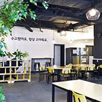 대한민국 NO.1 T커머스 채널