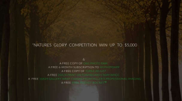 [해외] Natures Glory Competition