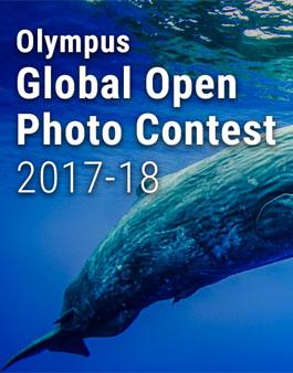 올림푸스 글로벌 오픈 포토 콘테스트 2017-18