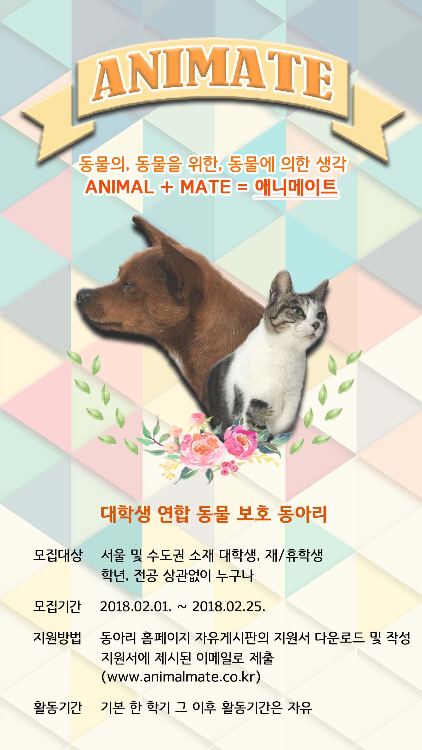 대학생 동물보호 연합동아리 애니메이트 16기 모집