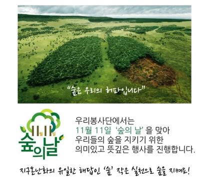 """[우리봉사단] 부산 19.11.3(일) """"숲, 너가 참 궁금해"""" 숲의 날 봉사자 모집(~10/29)"""